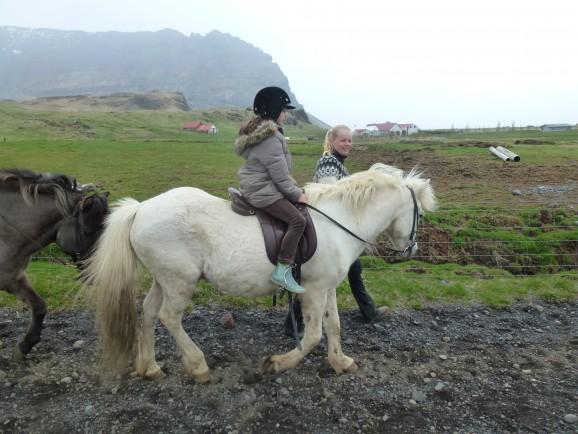 Island mit Kindern: Reiten
