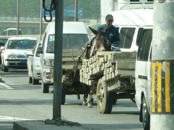 Pferdewagen auf den Straßen von Peking