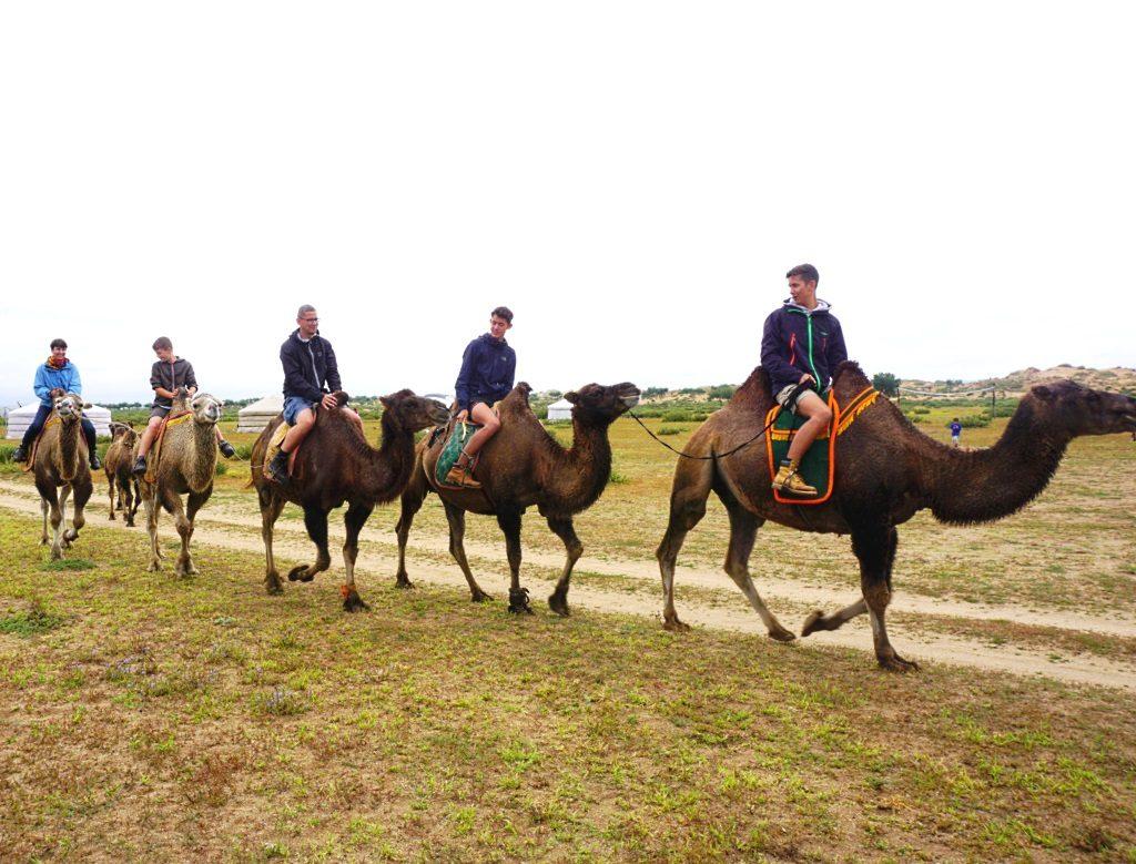 Kamelritt Mongolei