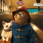Paddington im Film: Einstimmung auf London mit Kindern