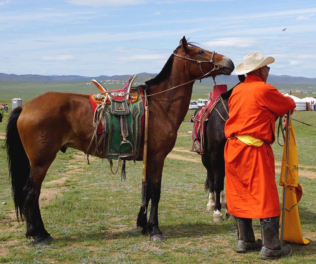 Mongolei: Pferd