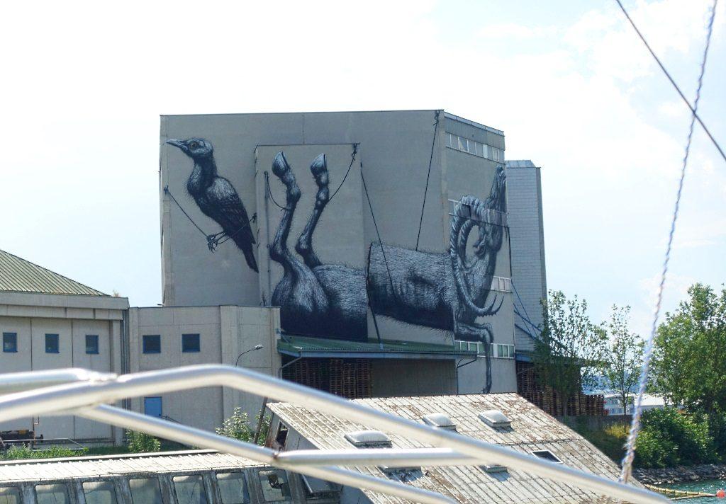 Roa Street Art Linz