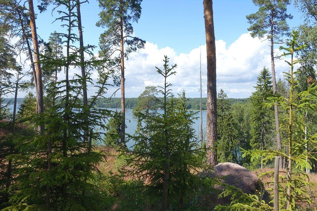 Lake Vitträsk
