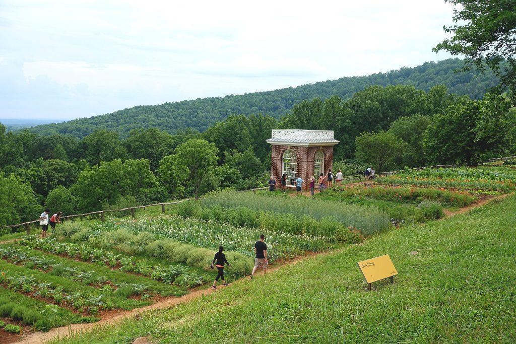 Moticello: vegetable garden and pavilion