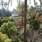Selig sinnesverwirrt in Sevilla: Eindrücke von einem Mutter-Tochter-Trip
