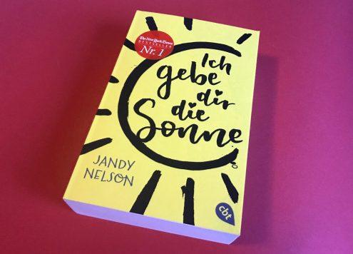 Jandy Nelson: Ich gebe dir die Sonne