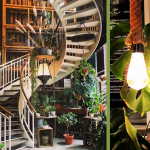 Design-Dienstag #16: Urban Jungle mit Monstera