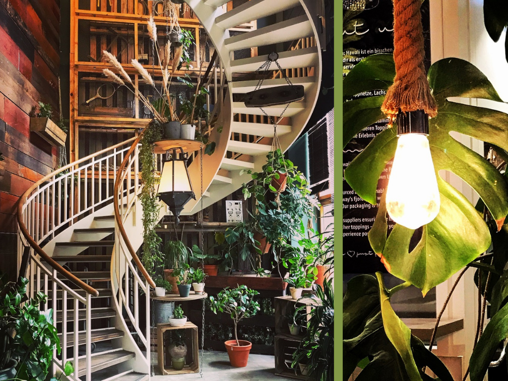 Design-Dienstag #16: Urban Jungle mit Monstera — KindAmTellerrand