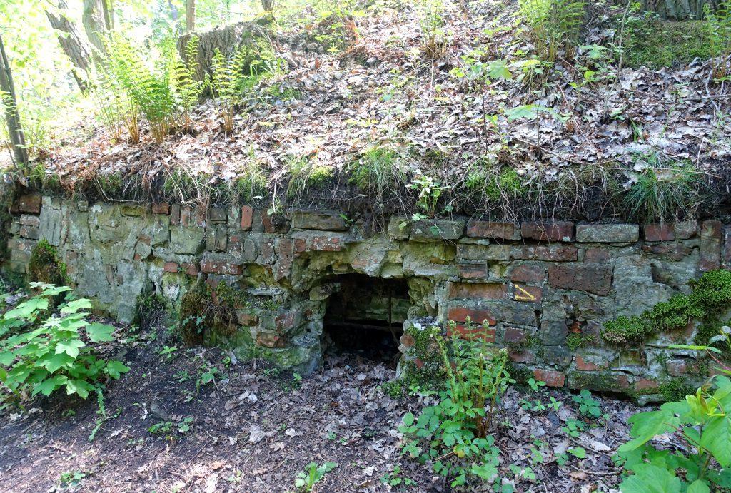 Ruinenwald Geesthacht
