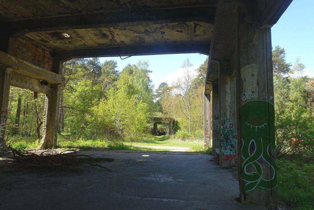 Ruinenwald Altengamme