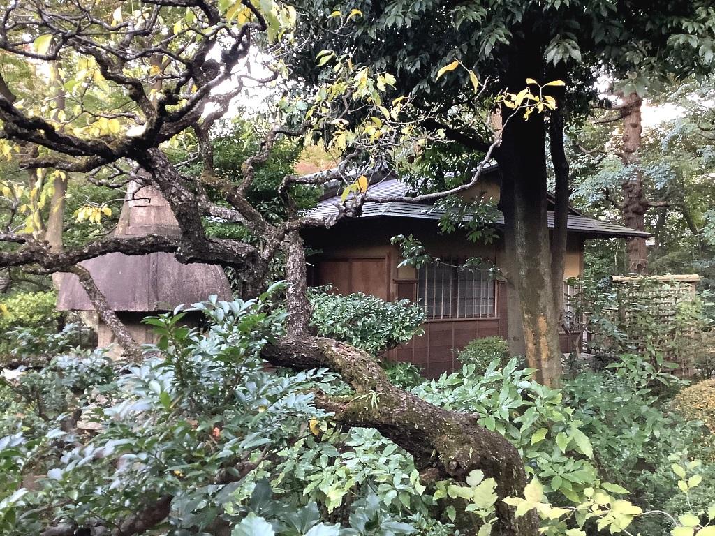 Nezu Museum Garten