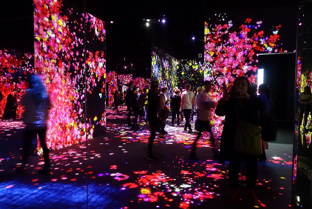 Immersive Art, teamLab Borderless