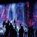 Pop, Immersion und Kunst in Tokio – mit Yayoi Kusama, teamLab Borderless und Takashi Murakami