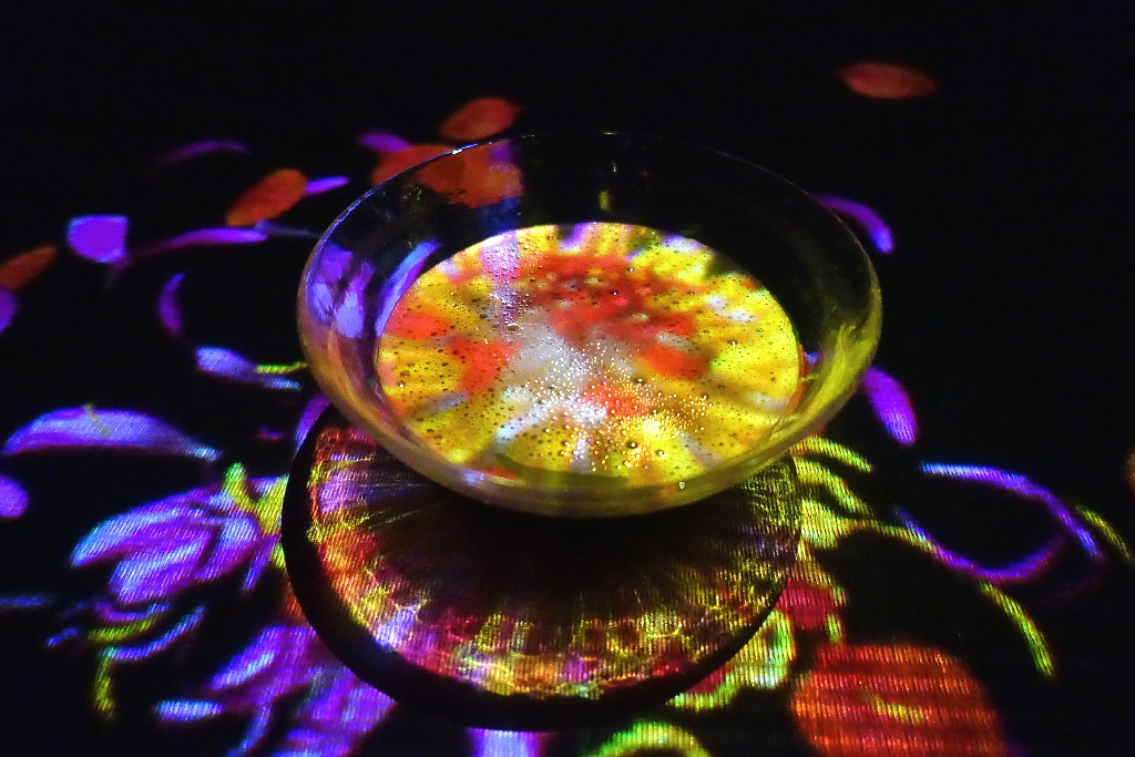 teamLab Borderless: EN Tea House