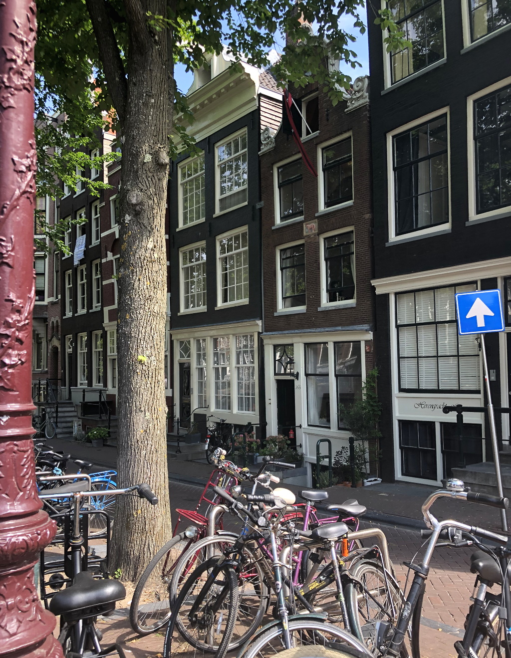 Holland mit Teenagern: Amsterdam